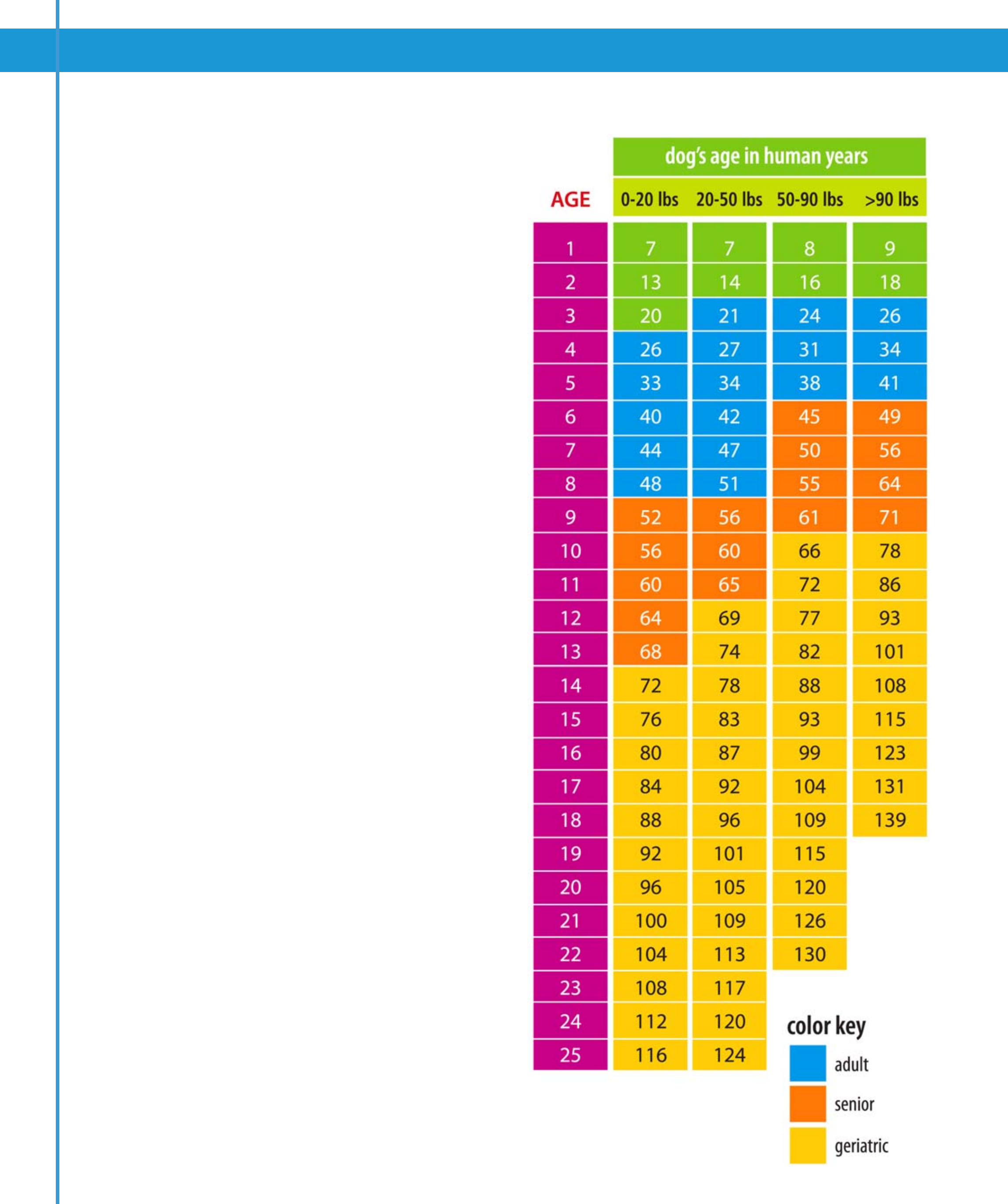 Dog age in human years chart free download nvjuhfo Image collections