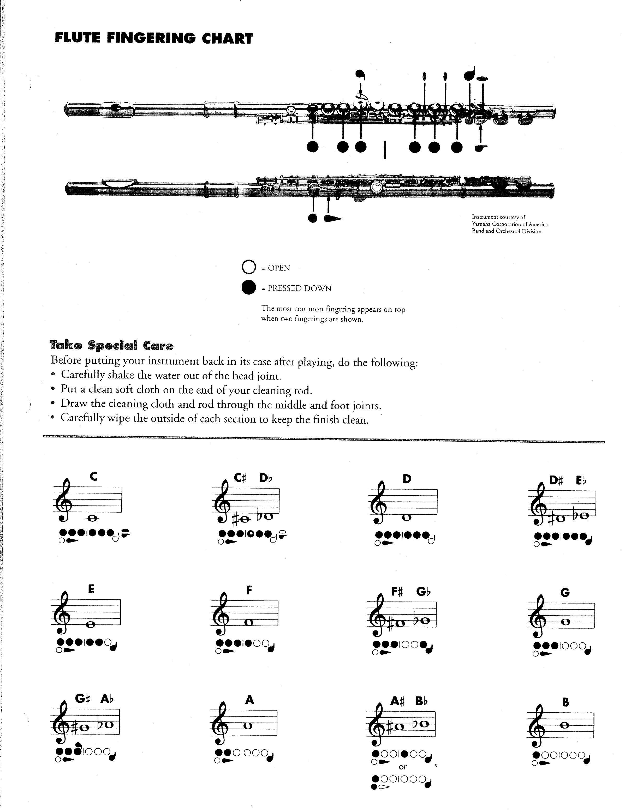 graphic about Printable Flute Finger Chart identified as Flute Fingering Chart Pattern Absolutely free Down load