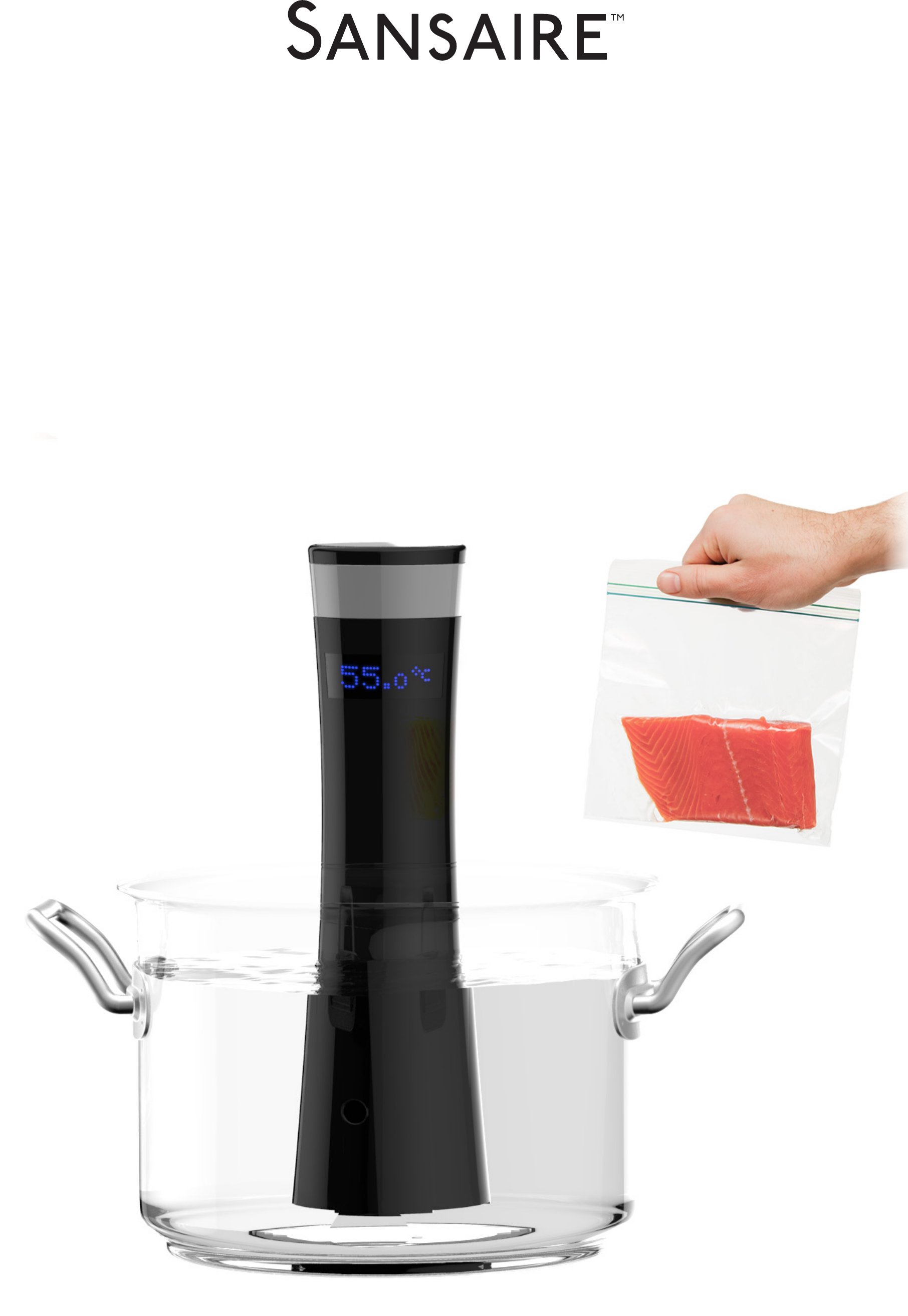 Sous vide cooking guide free download for Cuisine sous vide