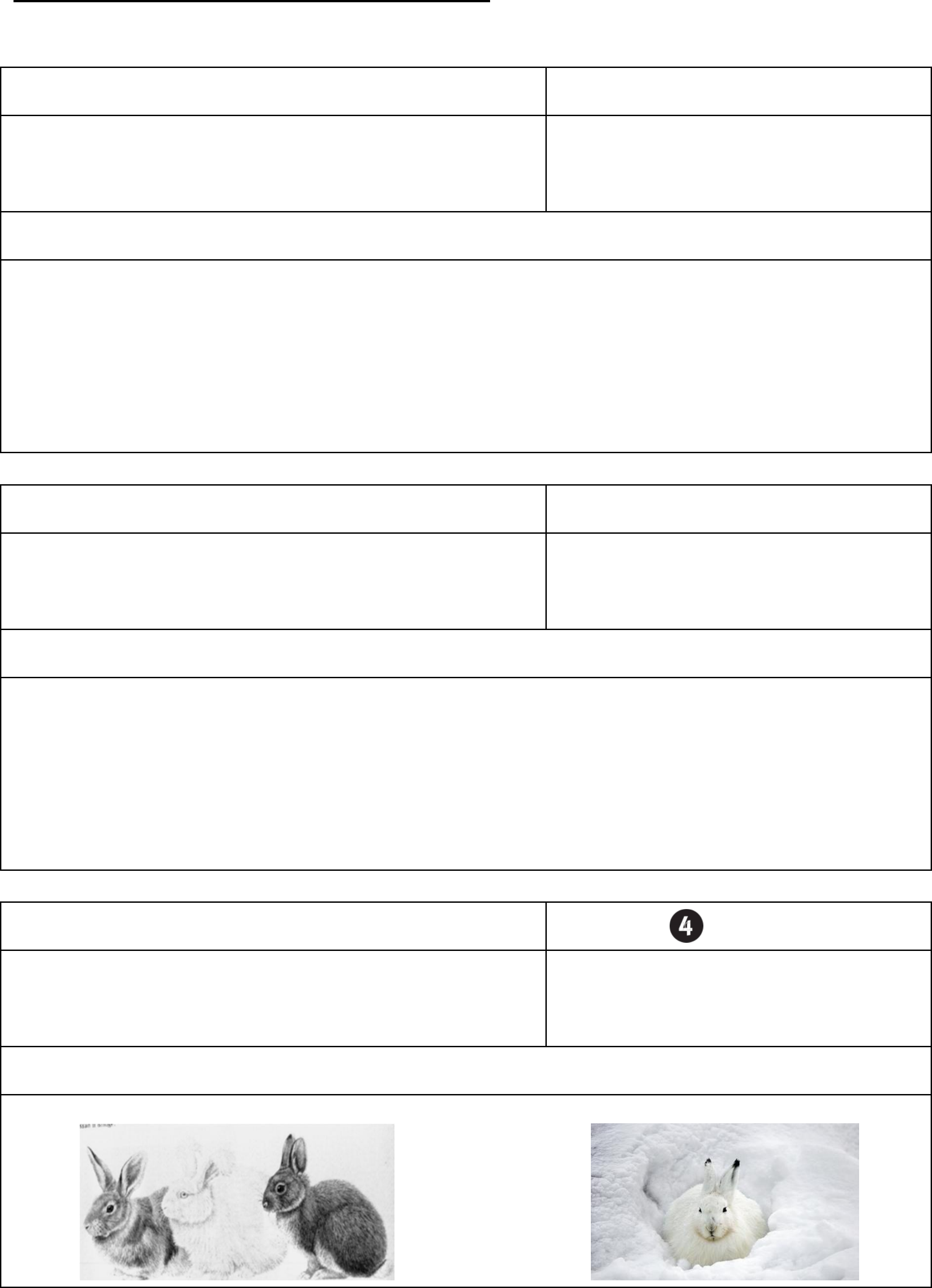 Science vocabulary index card template free download pronofoot35fo Choice Image