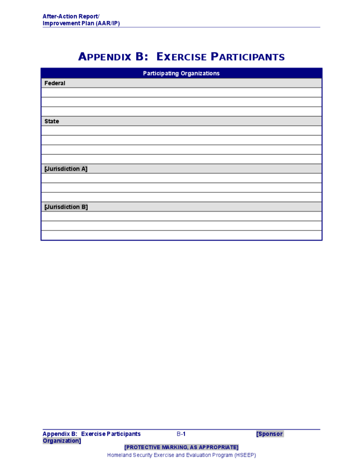 After Action Report Plan Template