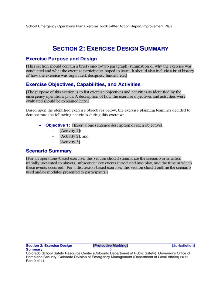 After Action Report and Improvement Plan Template Free Download