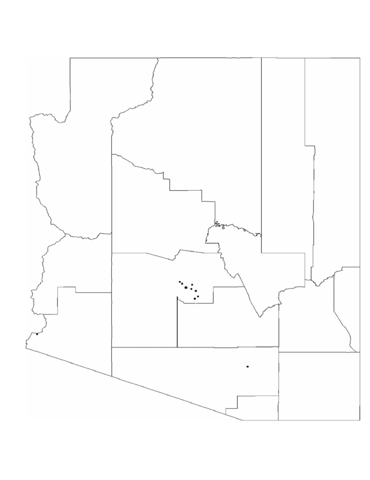 Blank Arizona City Map Free Download