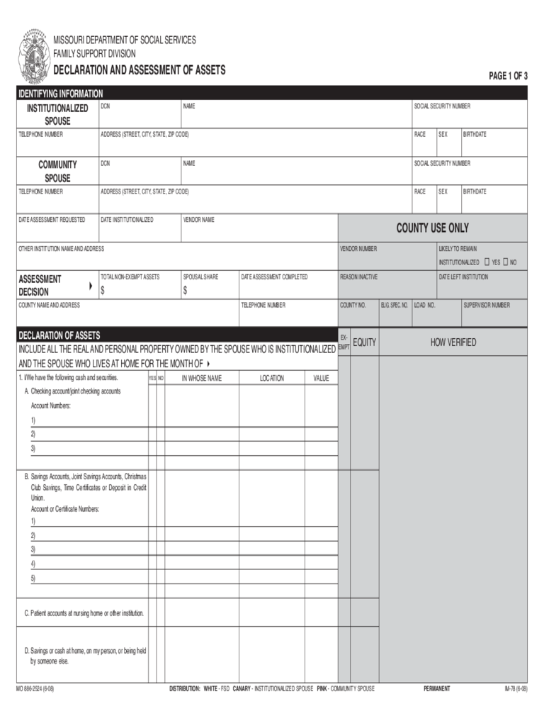 Asset declaration form 3 free templates in pdf word for Declaration document template