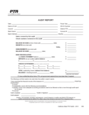 Audit Report Form Free Download