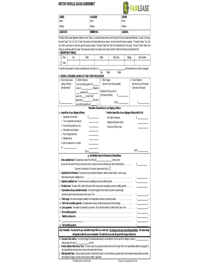 Auto Rental and Lease Sample Form