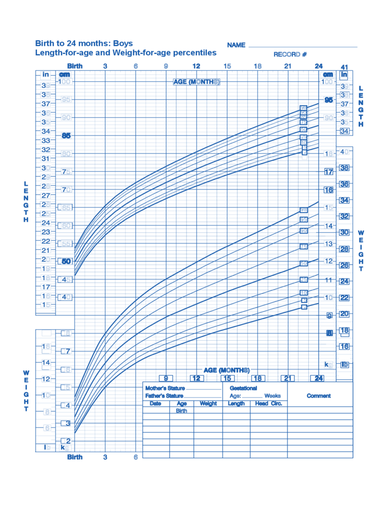 Birth to 24 Months Boys Baby Weight Chart