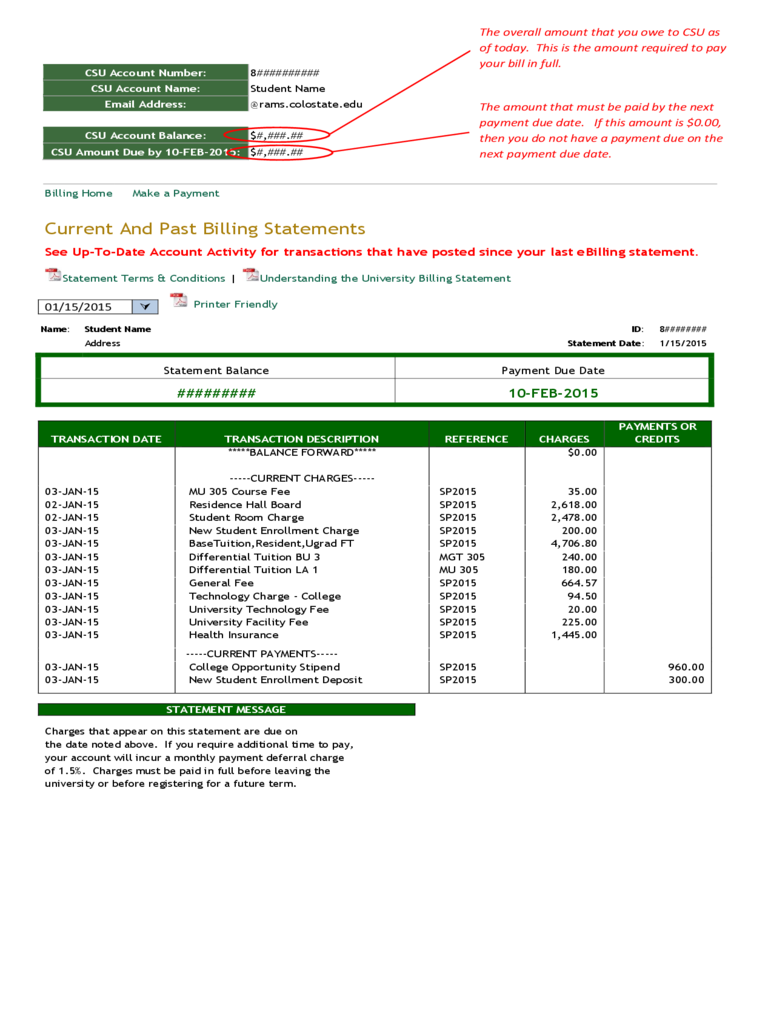 Current and Past Billing Statement Sample