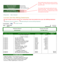 Current and Past Billing Statement Sample Free Download