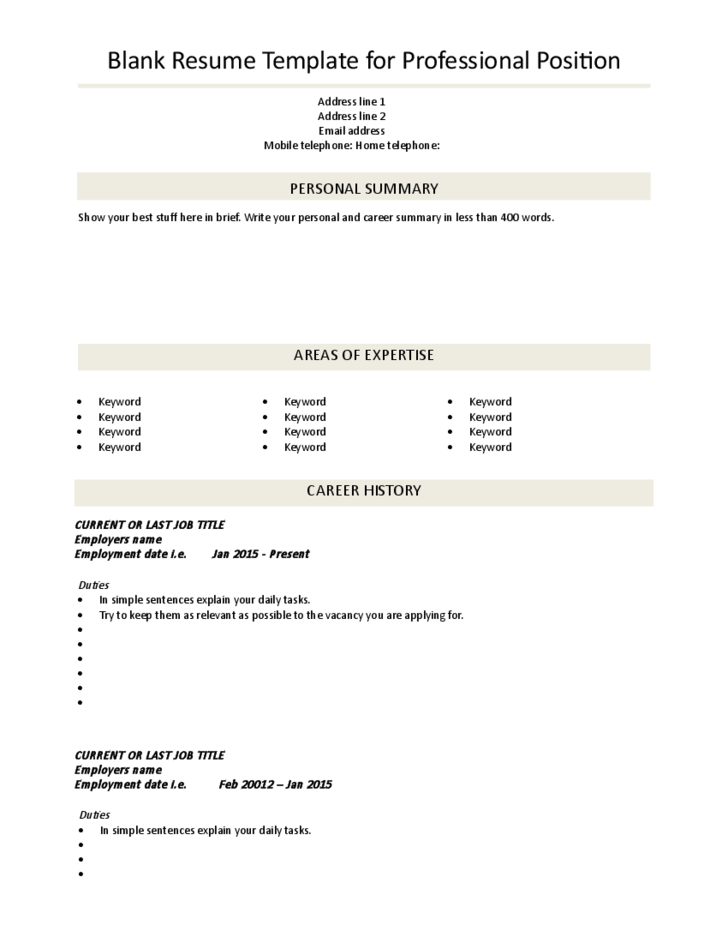 Blank CV Template Professional Position