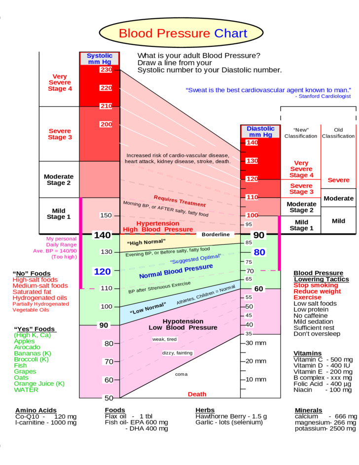 Summaries of Blood Pressure Chart Free Download