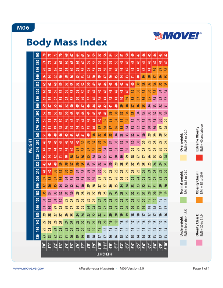 Standard Body Mass Index Chart Free Download