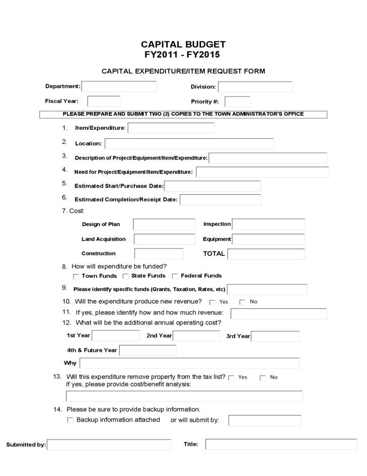 Detailed Capital Budget Form