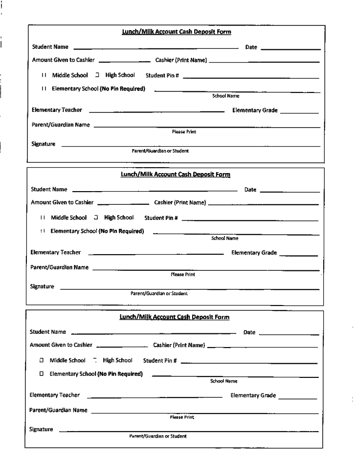 cash deposit form  Lunch/Milk Cash Deposit Form Free Download