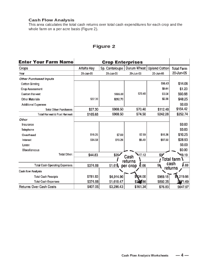 Cash flow analysis worksheet free download for Farm cash flow template