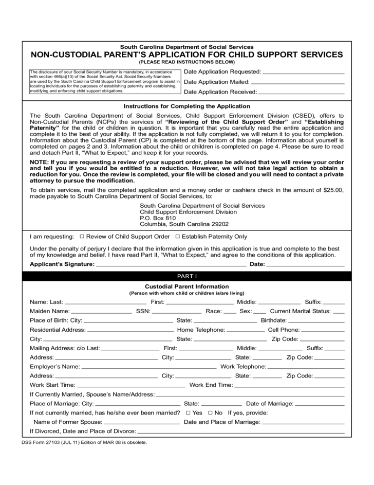 Non-Custodial Parent Application for Child Support Services ...