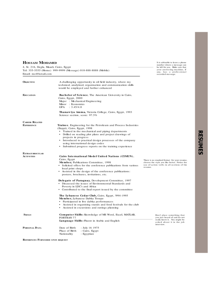 Chronological Resume Examples Free