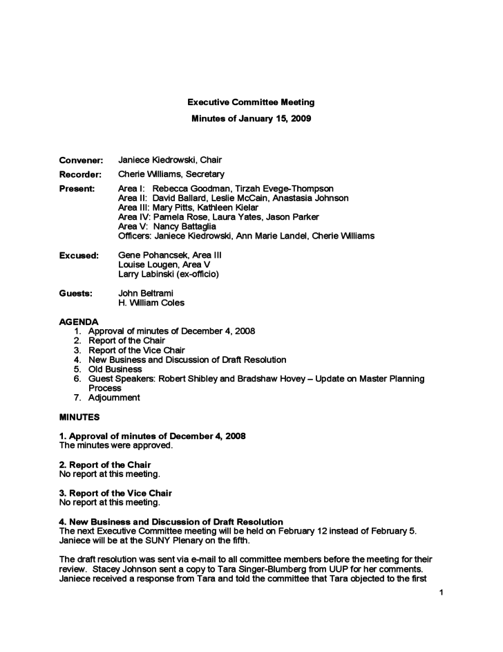 committee meeting minutes template 2009 free download