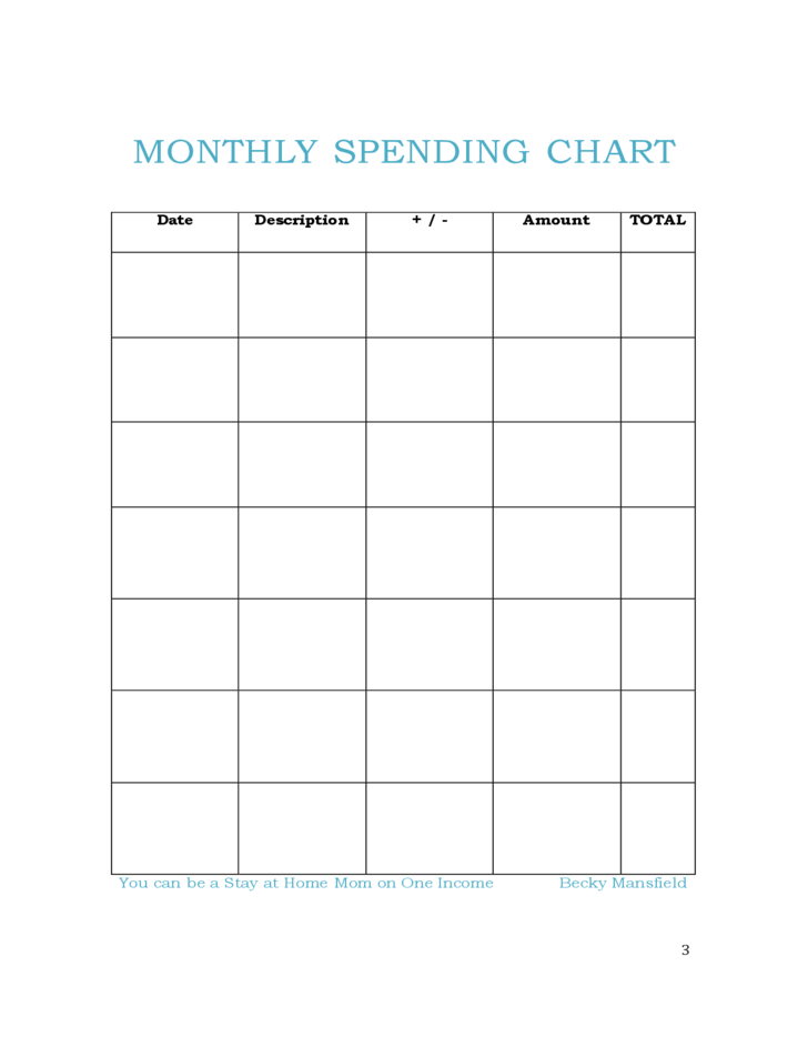 Daily Budget Chart