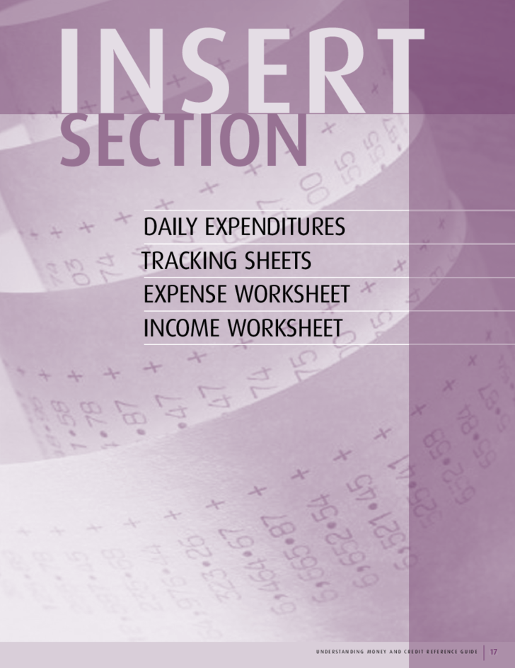 Daily Expenditure Tracking Sheet