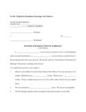Petition for Dissolution of Marriage Example - New Mexico