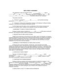 EMPLOYMENT AGREEMENT SAMPLE FORM Free Download