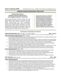Human Resources Executive Resume Sample Free Download