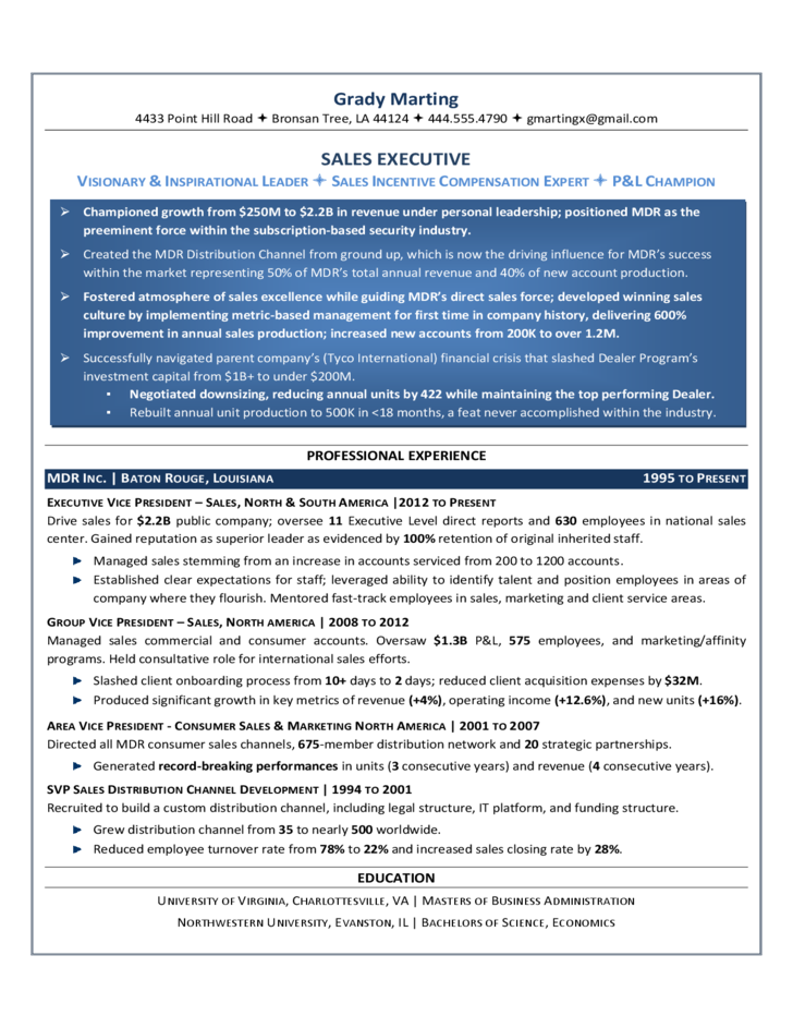 sales executive resume template free download