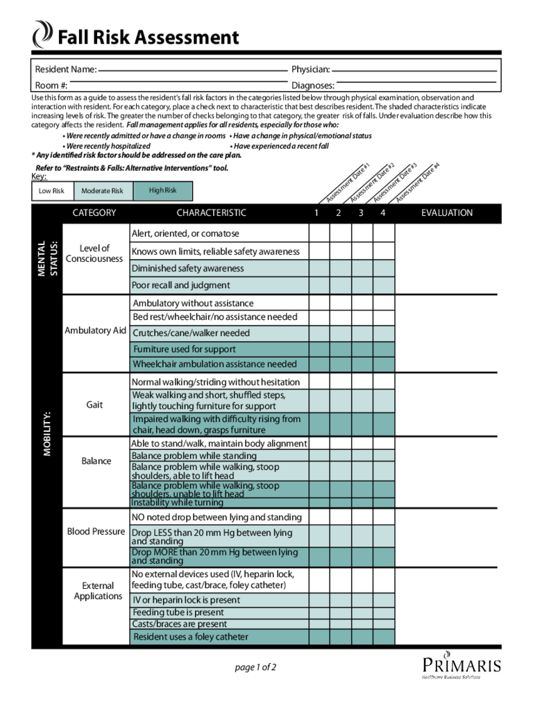 Fall Risk Assessment Form 2 Free Templates In Pdf Word