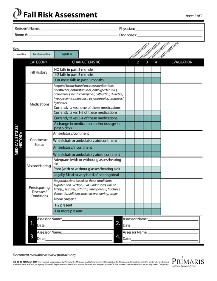 Fall Risk Assessment Template Free Download
