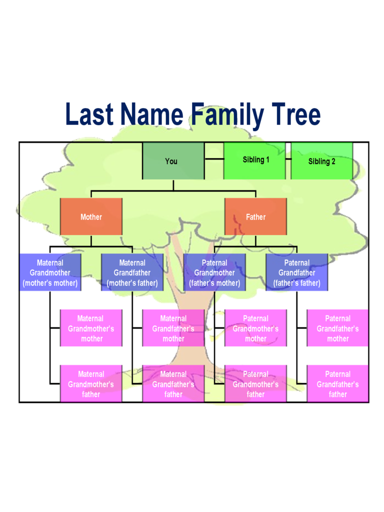 Family Tree Template 8 Free Templates in PDF Word Excel Download – Family Tree Template in Word