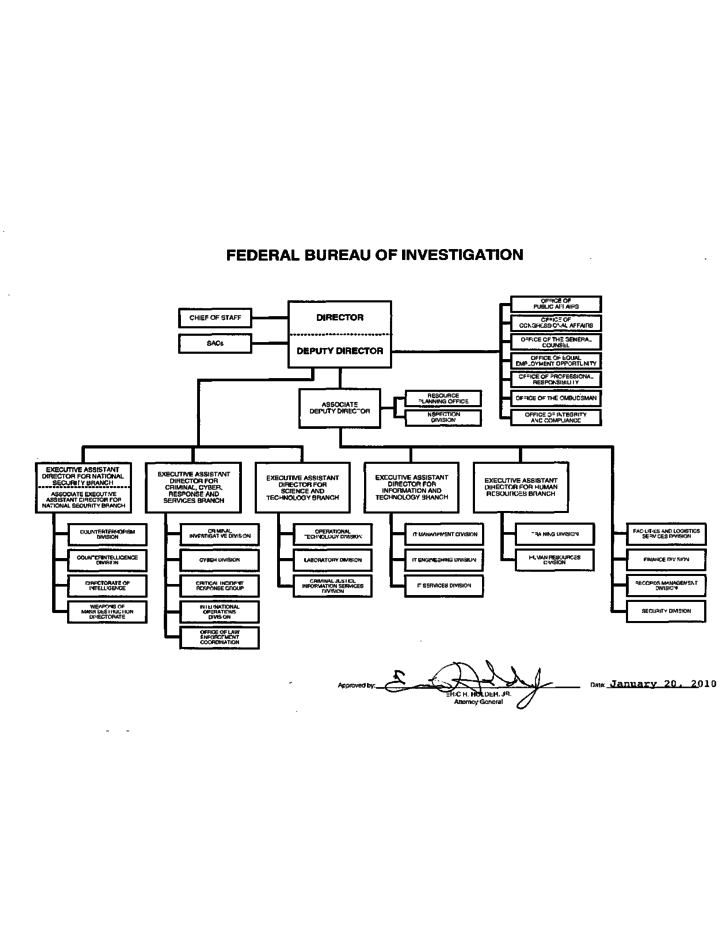 fbi organization chart sample free download