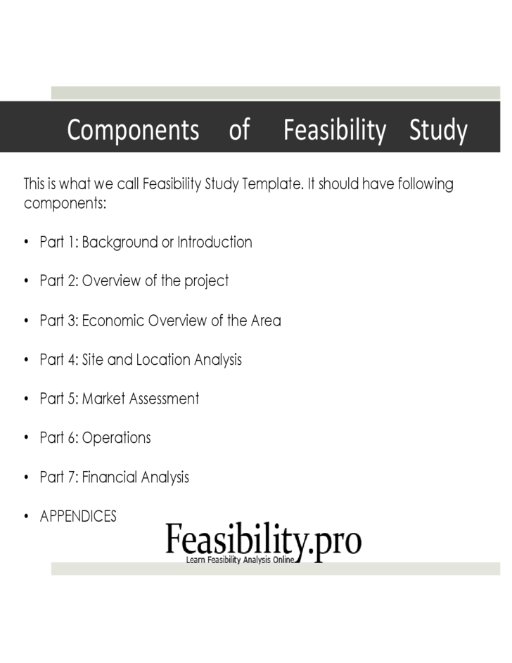 Feasibility study financial aspect definition Homework Service