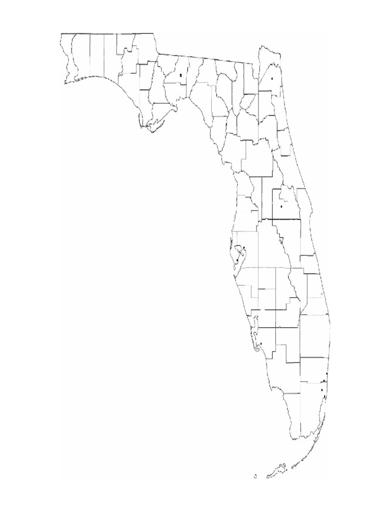 Blank Florida City Map