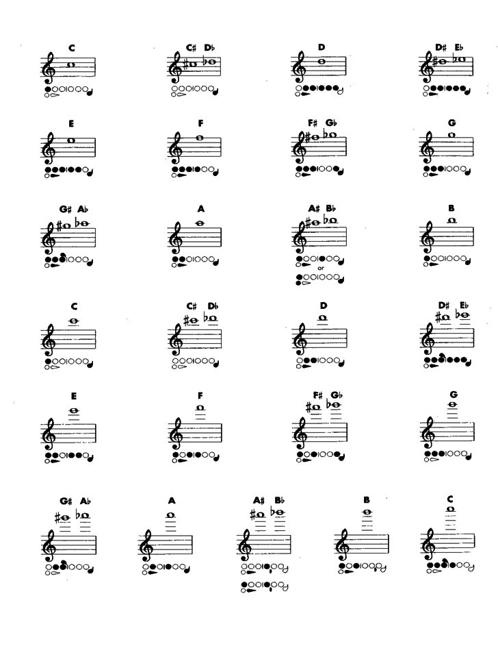 flute fingering chart sample free download