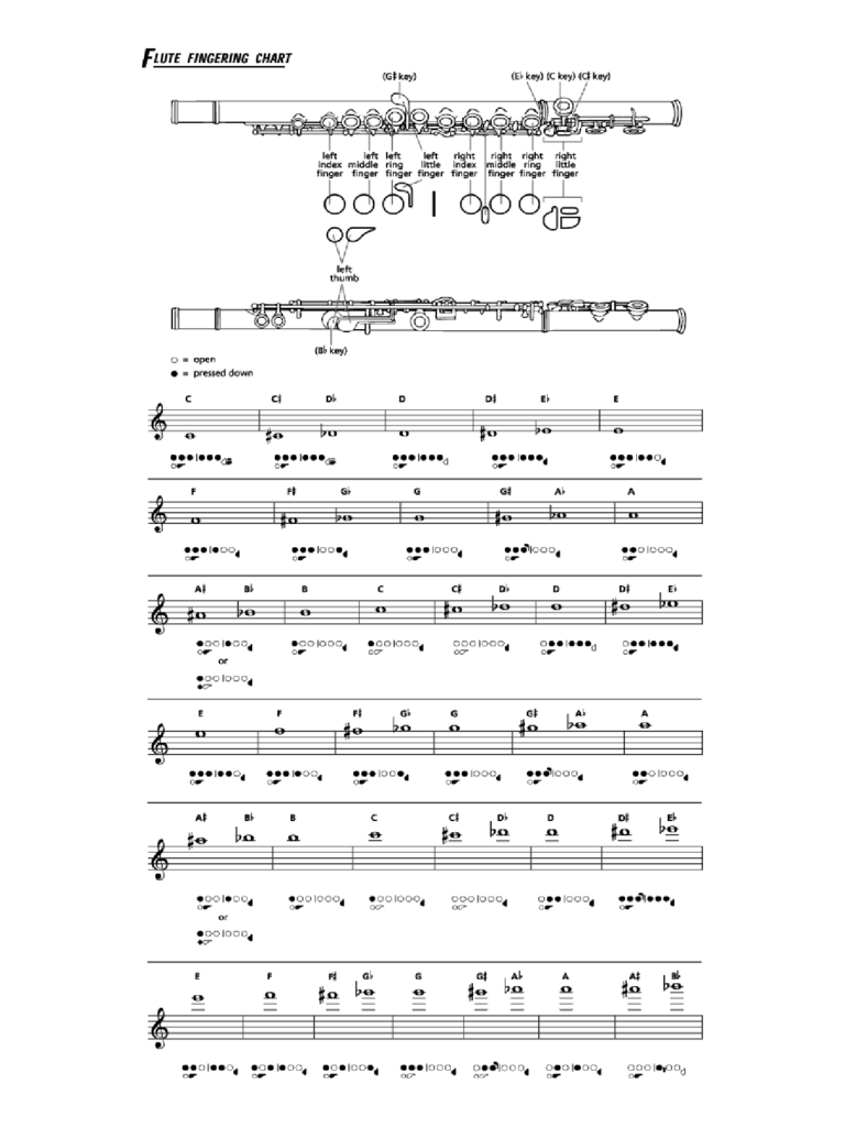 Flute Fingering Chart Example Free Download