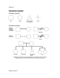 Genogram Example Template Free Download