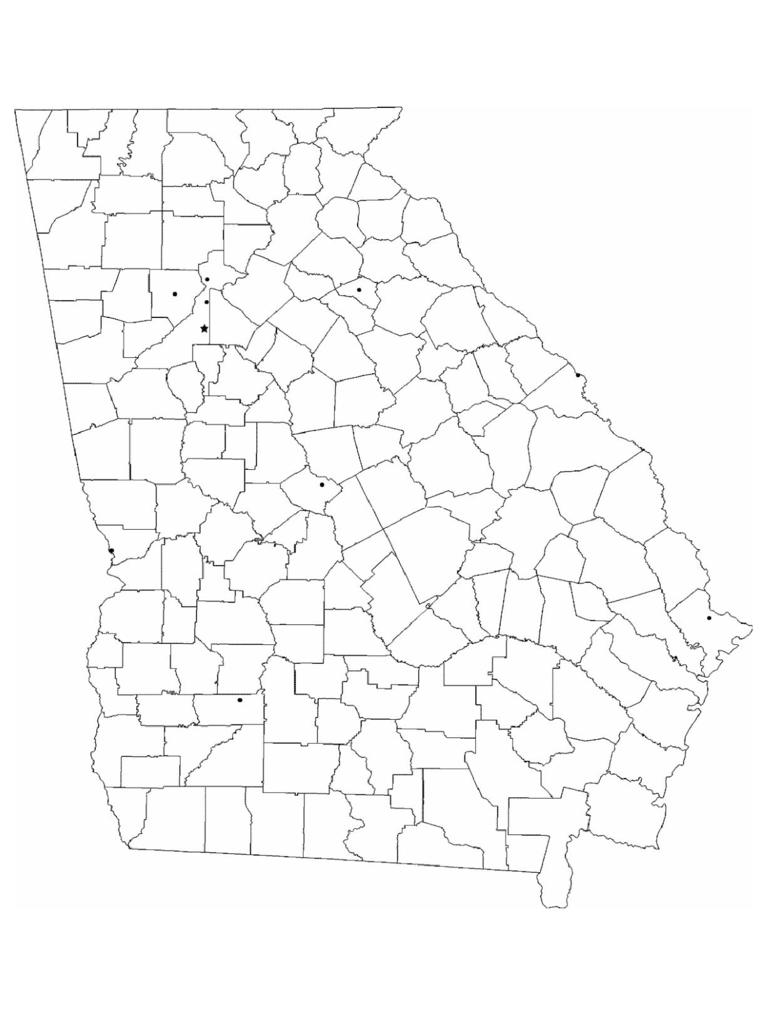 georgia map template