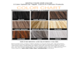 Hair Color Match Chart
