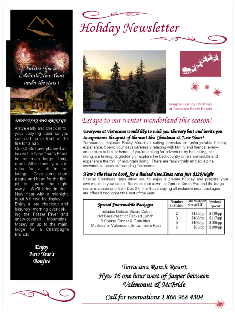 Holiday Newsletter Template  5