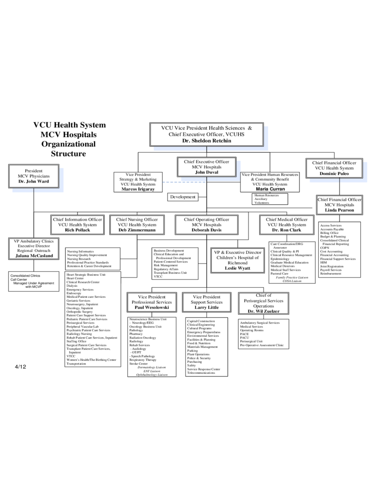 Hospital Organizational Chart Template Free Download