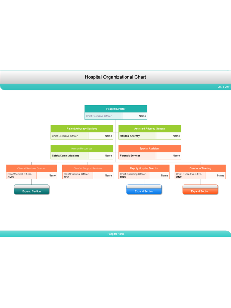 Simple Hospital Organizational Chart Free Download