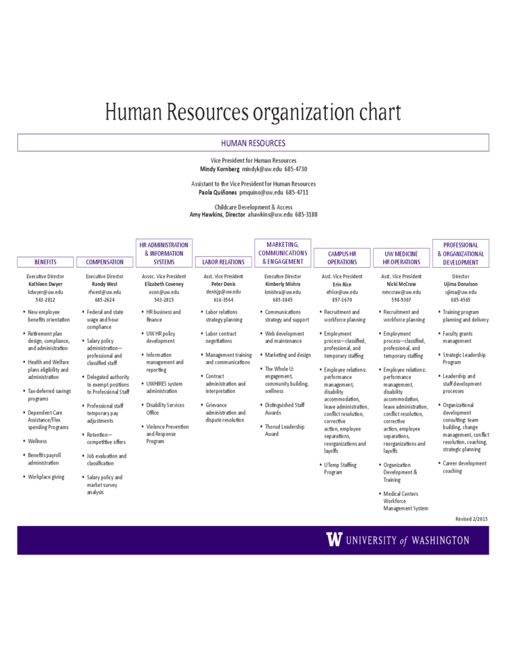 Human Resources Organization Chart Template Free Download