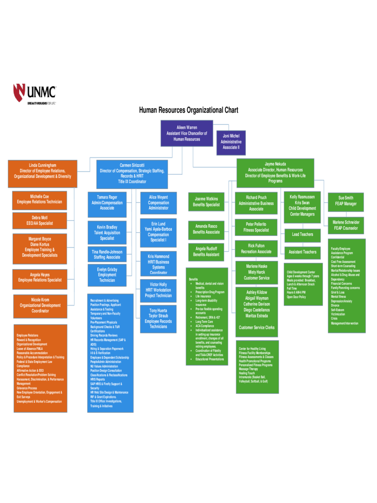 Human Resources Organizational Chart Example
