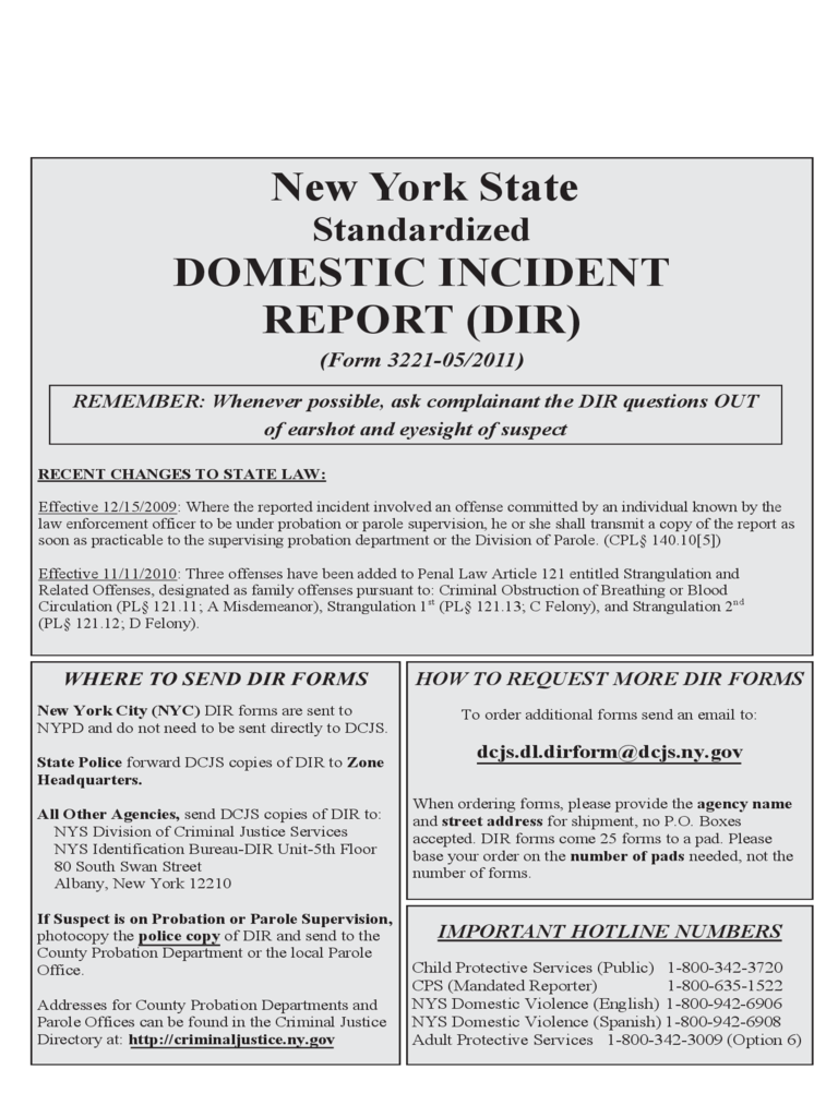 Standardized Domestic Incident Report - New York