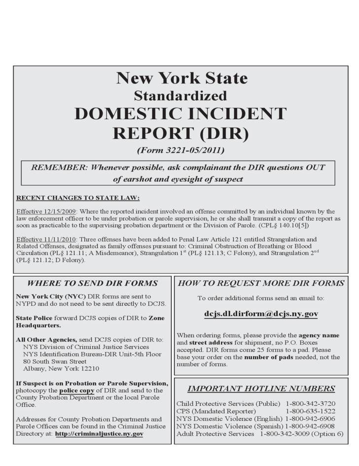 standardized domestic incident report
