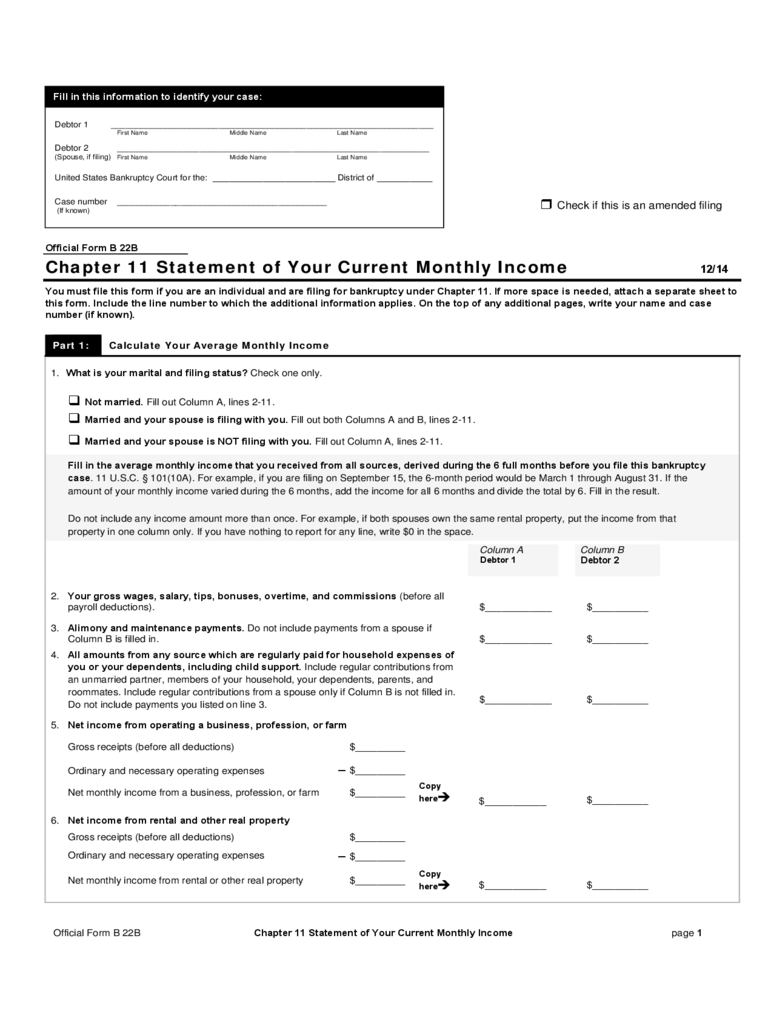 Your Current Monthly Statement Income Form