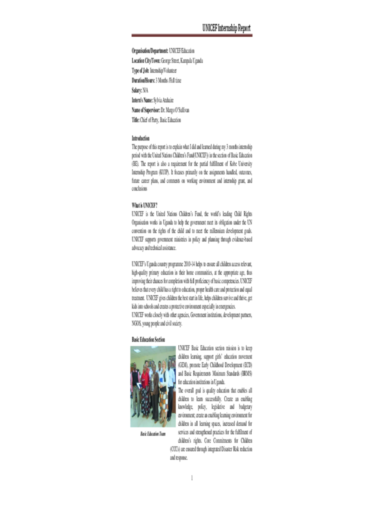 Internship Report - UNICEF Free Download