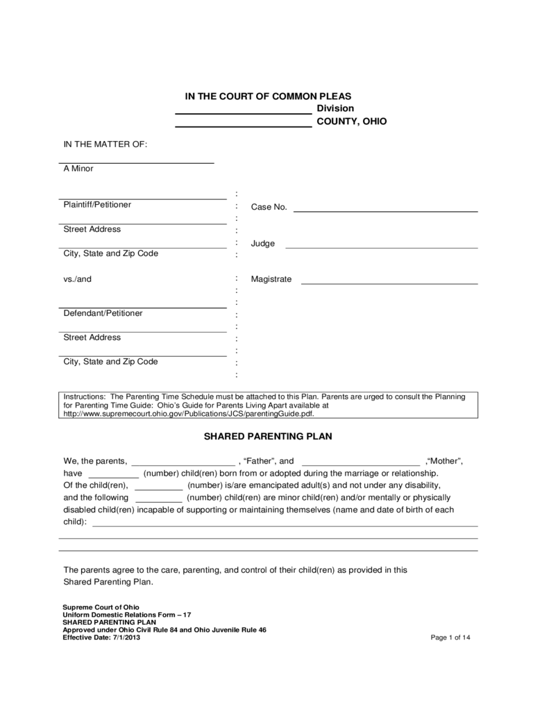Joint Custody Agreement Template