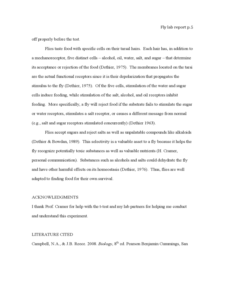 Coca Cola Advertisement Analysis Essay